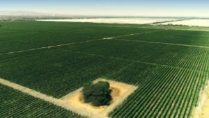 29.09.2021: WaterWays erhält drei Aufträge für intelligente Bewässerungsprojekte im Wert von insgesamt 570.000 C$